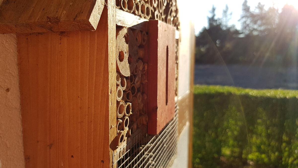 日本の学校のエコ化は木造校舎から?文部科学省が公立学校施設の木材の利用状況を公表